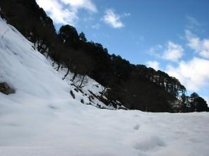 snow_point