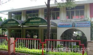 pachavathi-thumb